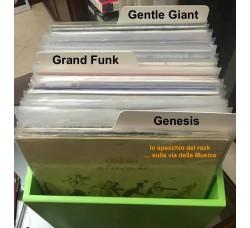 SEPARATORI per VINILI LP / 33 GIRI - Mod. Inglese BIANCO - Flap Cm16- Qtà 10