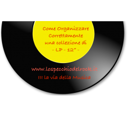 Come organizzare  i Long Playing (LP/Vinile)