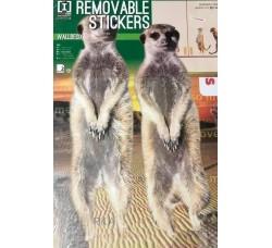 Animali per  pareti - Stickers Riposizionabile Removibile