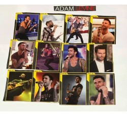 ADAM LEVINE- Adesivi Rimovibili - 12 Stickers