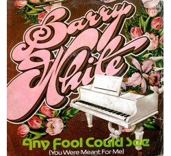 Barry White – Any Fool Could See (You Were Meant For Me) - 45 RPM