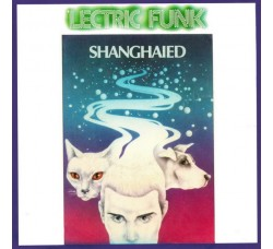 'Lectric Funk ‎– Shanghaied – 45 RPM