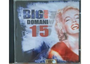 Various – Big Del Domani 15 - (CD)