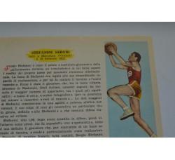 STEFANINI SERGIO fig. Pallacanestro n.11/12 Enciclopedia Sport 1959