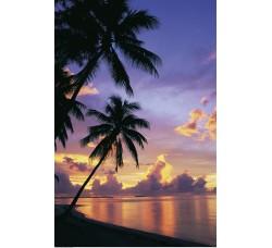 Clementoni - Tropici, Puzzle da 500 pezzi