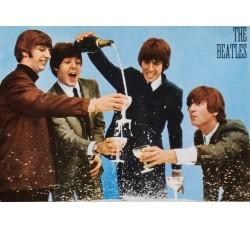 Beatles - Cartolina da collezione