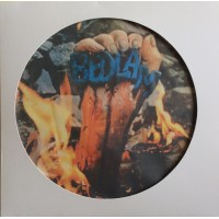 Bedlam  ‎– Bedlam - Vinyl Picture Disc