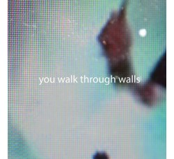 You Walk Through Walls ‎– LP/Vinile