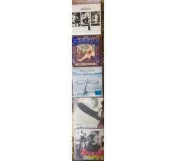 Espositore da parete in PPL per (5 LP) 33 giri