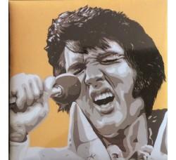 Elvis Magnete da collezione